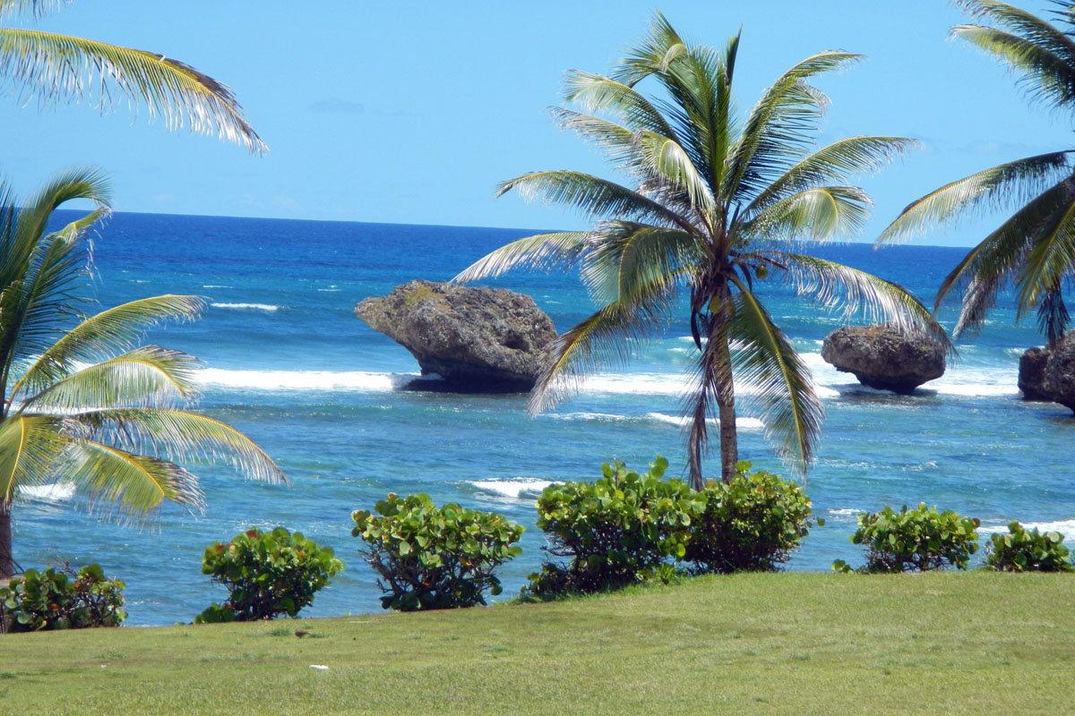 a Picture of giant rocks of the Eastern Shore of Barbados