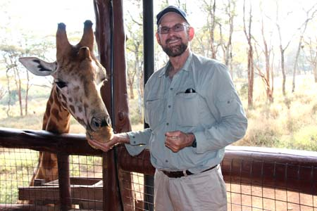a Picture of Dave hand feeds Rothschild's Giraffe at the Langata Giraffe Center, Kenya